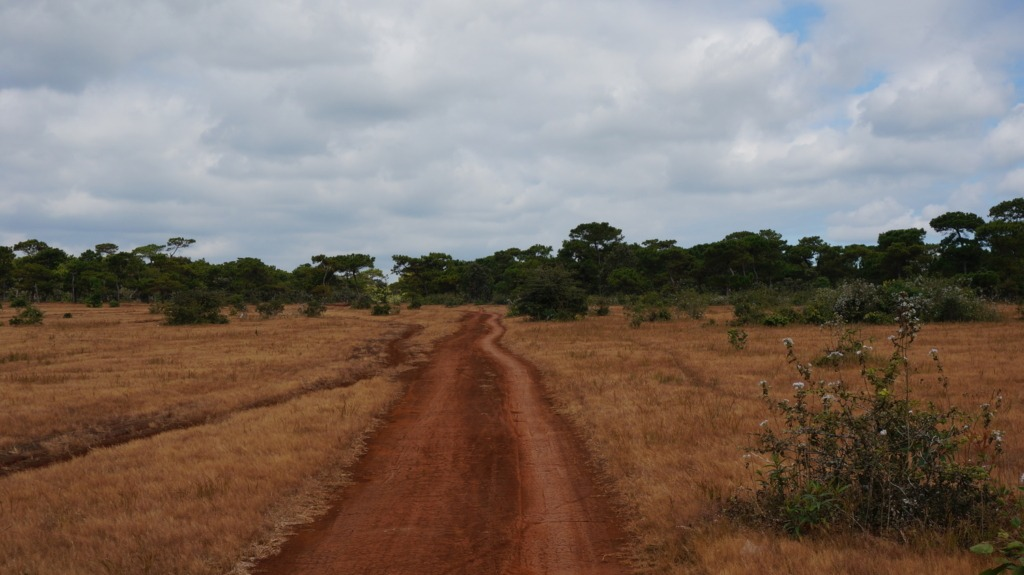 Dirt road through Dak Doa's pink fields