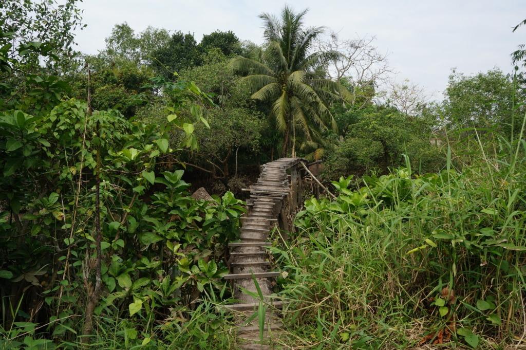 Crazy bridge in An Binh