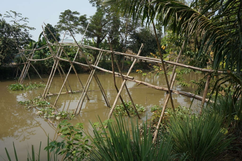 """Monkey bridges"" are common in the Mekong delta"