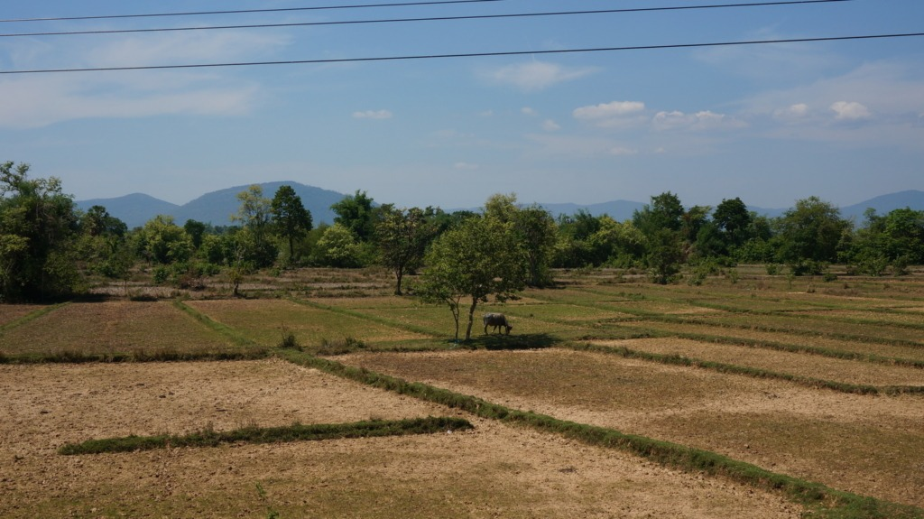 Countryside scenery along the road to Savannakhet